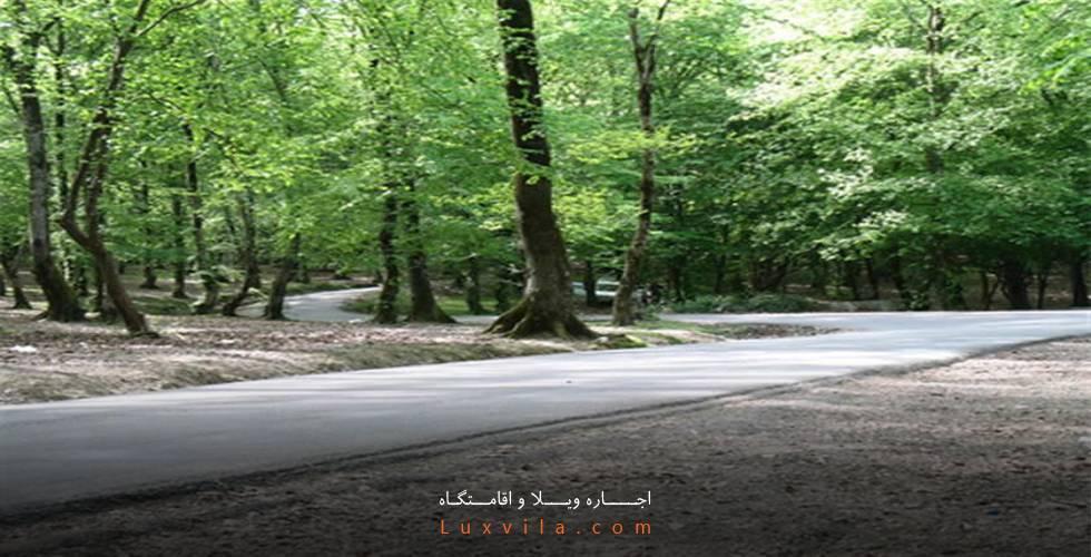 پارک جنگلی تلار