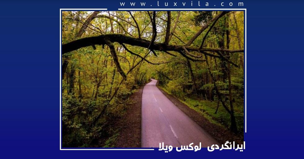 مسیر دسترسی به پارک جنگلی نور<